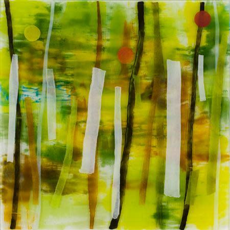 Martha Pfanschmidt, transect, 2014
