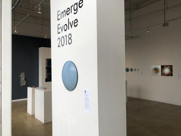Emergeevolve01