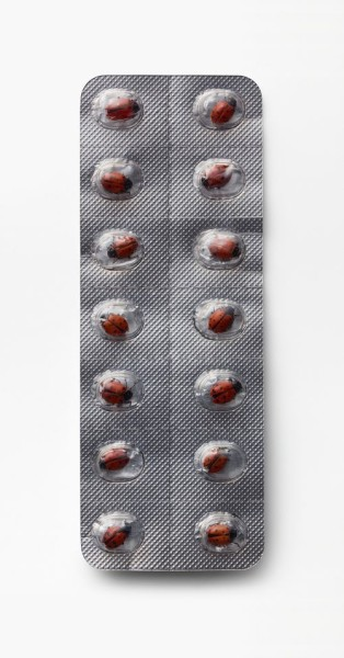 Nancy Fouts, Happy Pills, 2018