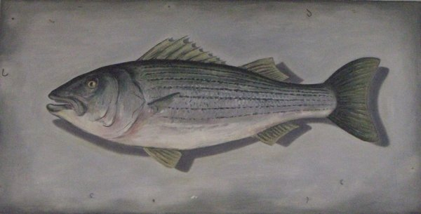 Andrew Castrucci, Striped bass, 2005