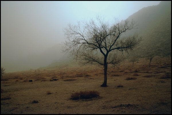 Ohad Maiman, Untitled (Mongolia), 2006