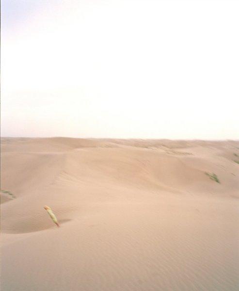 Giada Ripa, Uighur 2, 2004