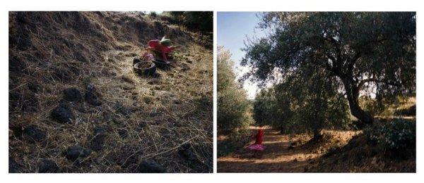 Giada Ripa, Untitled 2 (dyptic), 2005