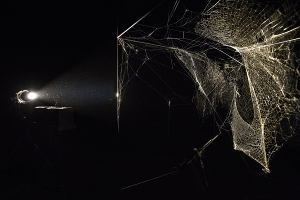 Tomás Saraceno: Aerosolar Journeys