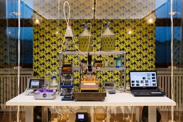 Philippe Parreno at Espace Louis Vuitton Venezia