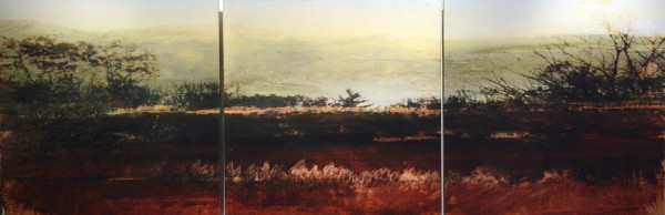 Dorothy Simpson Krause, Redmarsh, 2008