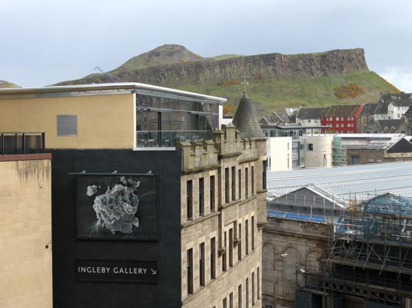 Billboard for Edinburgh installation by Anya Gallaccio 10 x 13.5 ft billboard installation