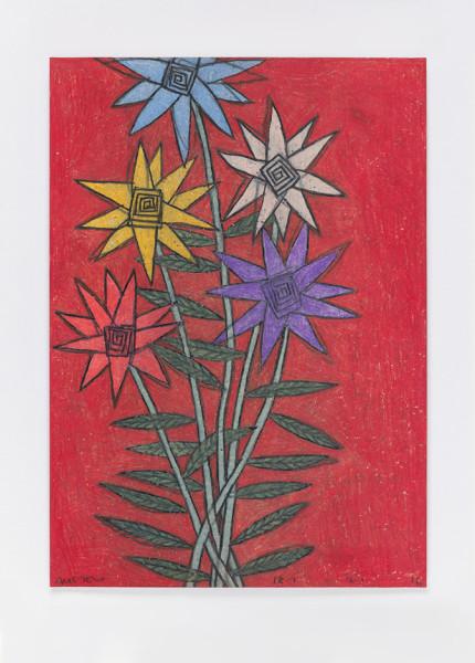David Austen Untitled (night flowers) 18.2.16, 2016 coloured pencil on paper 36.6 x 28 cm (framed)