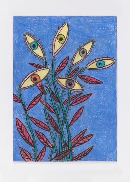 David Austen Untitled (night flowers, eyes) 22.12.12, 2012 coloured pencil on paper 36.6 x 28 cm (framed)