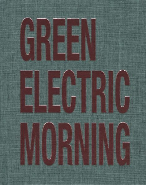 David Austen: Green Electric Morning