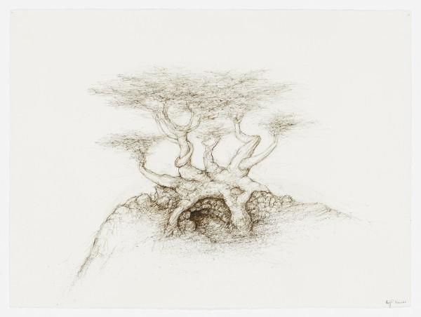 Raffi Kaiser, #021668 Baum, um 2017