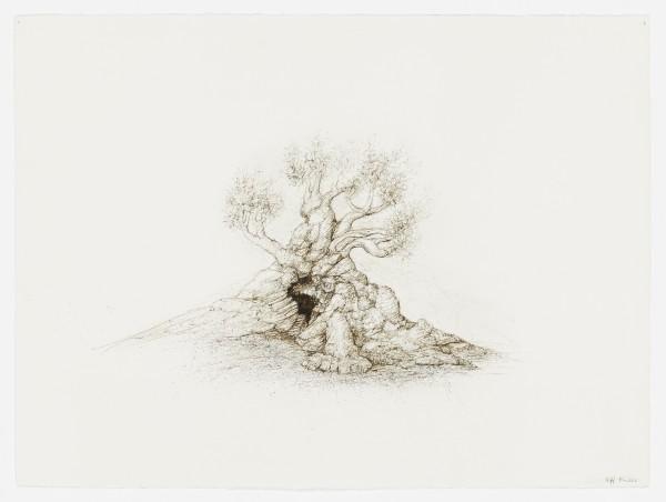 Raffi Kaiser, #021672 Baum, um 2017