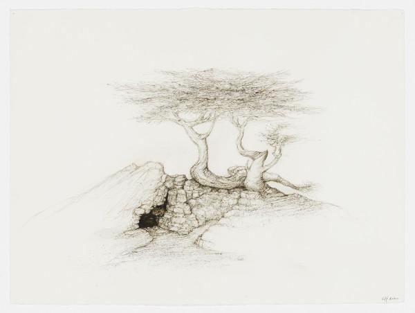 Raffi Kaiser, #021673 Baum, um 2017