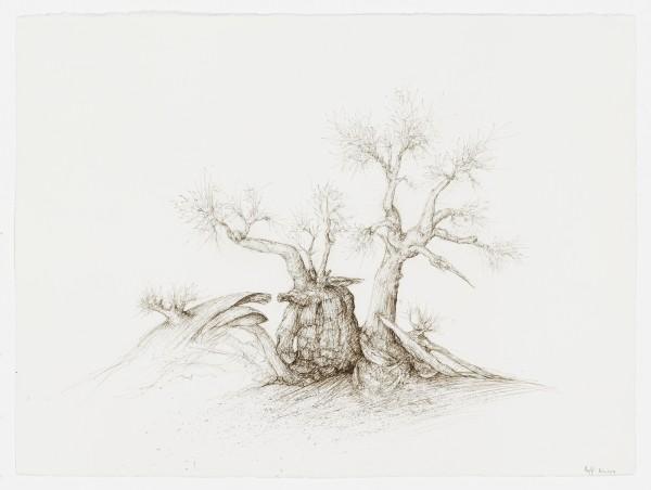 Raffi Kaiser, #021674 Baum, um 2017