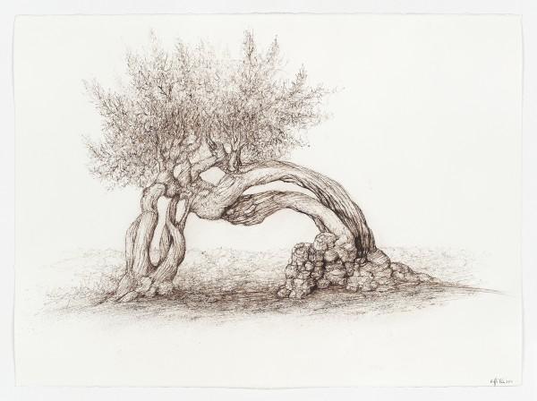 Raffi Kaiser, #020665 Baum, 2013/2014