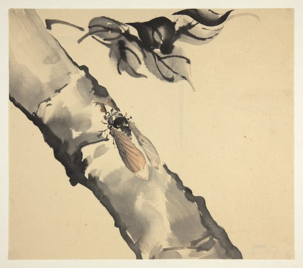 Malerei, #000244 Attributed to: GYOKUSEN Mochizuki (1834-1913), Cicada sitting on a branch, 19th / early 20th century
