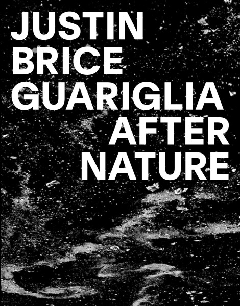 After Nature: Justin Brice Guariglia