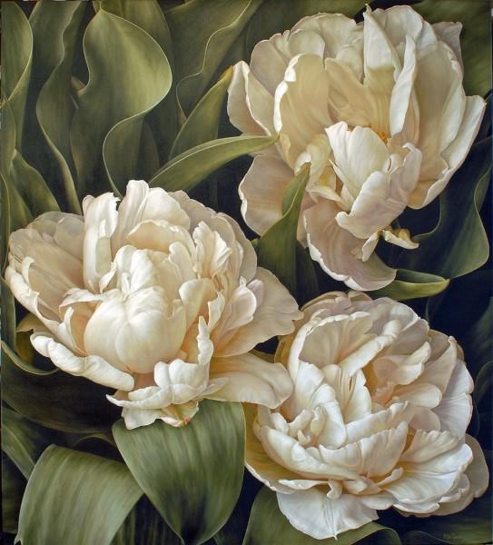 Mia Tarney, White Peony Tulip, 2009