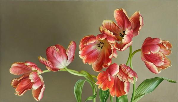 Mia Tarney, Parrot Tulips, 2018