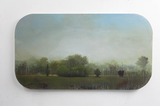 Peter Hoffer  Birkshire, 2012  Oil, acrylic, and resin on panel  40 x 70 inches