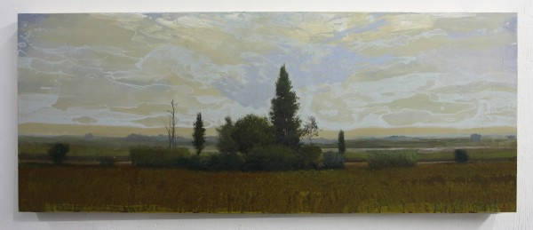 Peter Hoffer  Terrace, 2012  Oil, acrylic, and resin on panel  24 x 60 inches