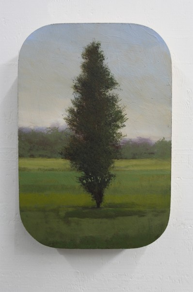 Peter Hoffer  New Haven, 2012  Oil, acrylic, and resin on panel  16 x 24 inches