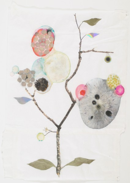 Marilla Palmer  Elevasted Aster, 2011  mixed media on Mulberry paper  25 x 18 in