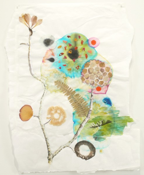 Marilla Palmer  Fern and Feather, 2011  mixed media on Mulberry paper  25 x 18 in