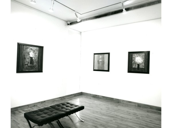 JOHN D. EDWARDS Installation View