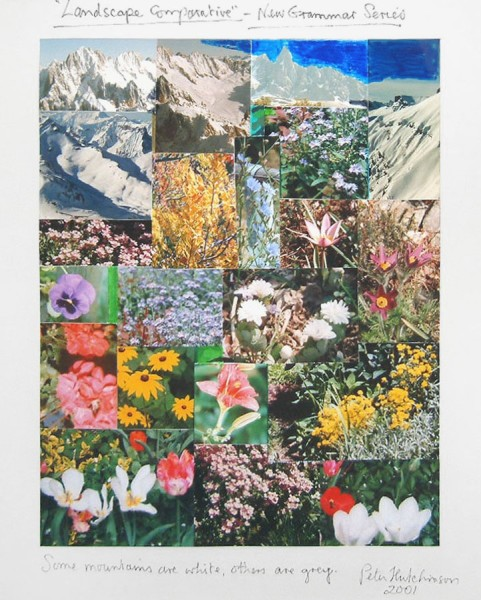 PETER HUTCHINSON, Landscape Comparative - New Grammar Series, 2001
