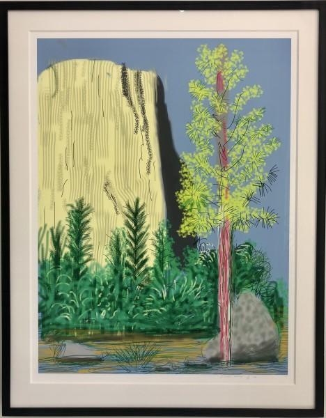 David Hockney, Yosemite No.22, 2010