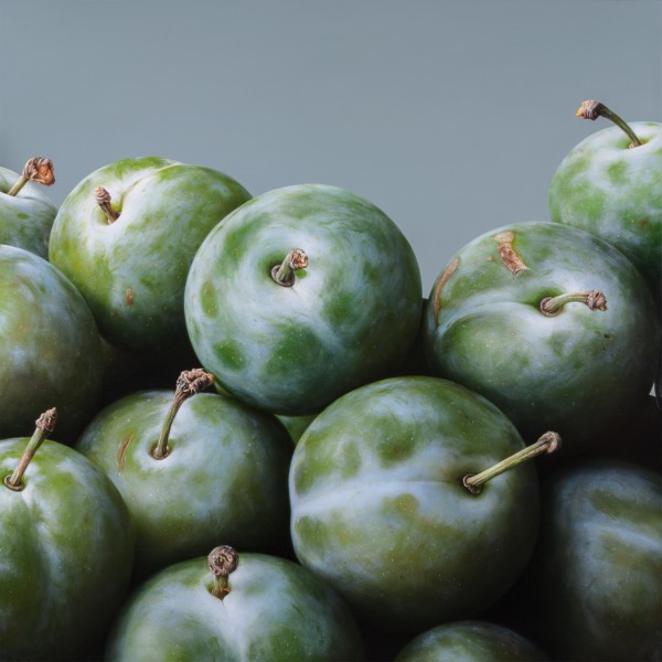 Antonio Castello  Plums II  Oil on linen on board  120 x 120 cm