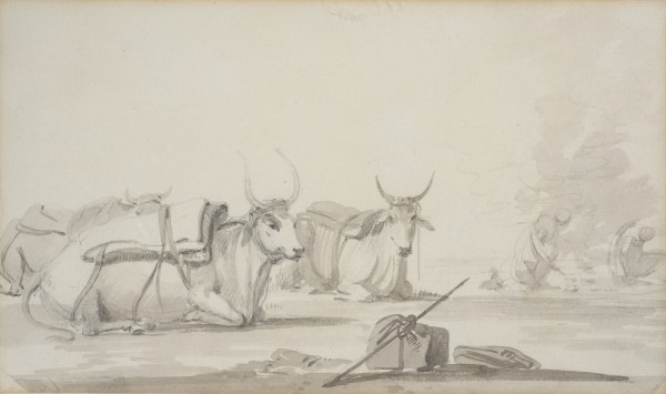 2. William Daniell R.A. (1769 - 1837), Bullocks , 1780-1790