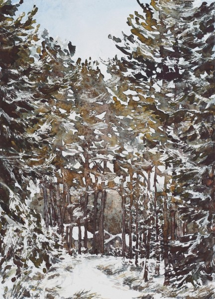 Caroline Ward-Raatikainen December, Finland watercolour £450 Winner of The Artist Prize