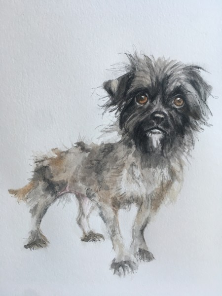 Sarah Gooder Seeking Adoption watercolour & ink £250 Judge's Choice Selected by Tim Sayer Journalist & Art Collector