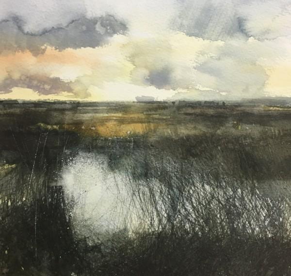 Paul Fowler, exhibitor in 2020 Winter Sun, Oare Marsh watercolour