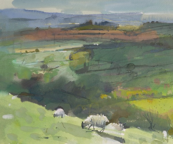 Richard Pikesley, Sheep, North from Eggardon