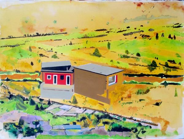 Iain Nicholls, Cat Hill Field and Tuscon