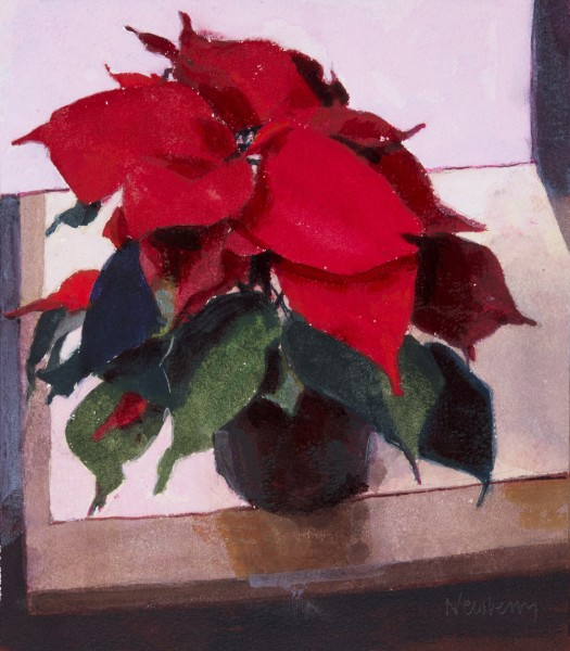 John Newberry, Poinsettia