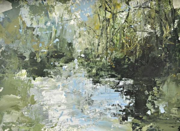 Colin Merrin, Lydford Gorge, Study I