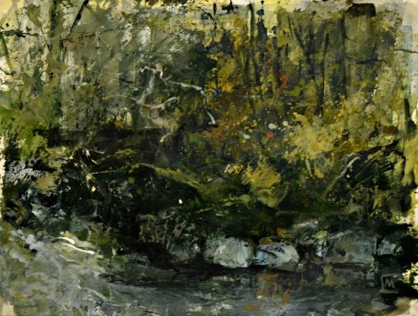 Colin Merrin, Lydford Gorge, Study II