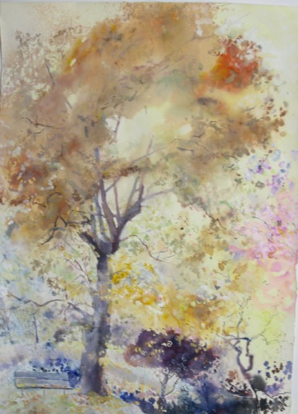 Sophie Knight, Falling Leaves in the Autumn Sunlight, Ladywell Park, London.