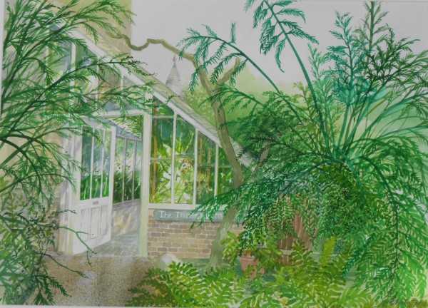 Olwen Jones, The Thomas Moore Fernery