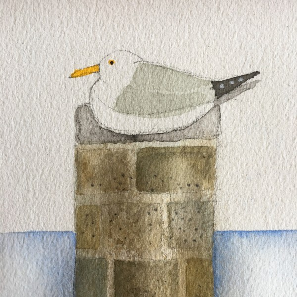 Jill Leman St Ives Seagull watercolour Frame: 24 x 24 cm Artwork: 10 x 10 cm