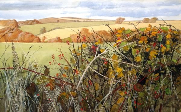 Jim Dunbar Hawthorn and Brambles watercolour Frame: 80 x 100 cm Artwork: 46 x 70 cm