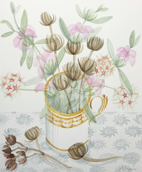 Angie Lewin Alpujarran Seedheads with Phlomis watercolour 26x21.5cm