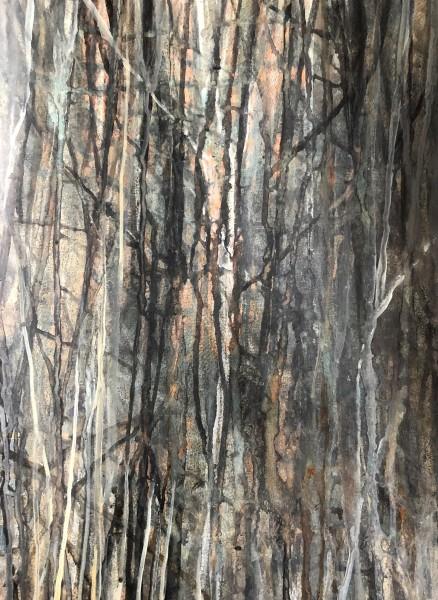 Robin Richmond, In a Dark Wood, France