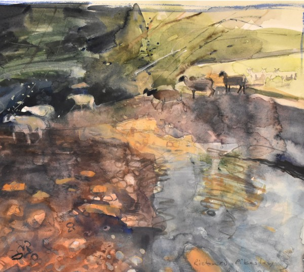 Richard Pikesley Sheep in the stream, Axe Valley watercolour Frame: 40 x 40 cm Artwork: 20 x 22 cm