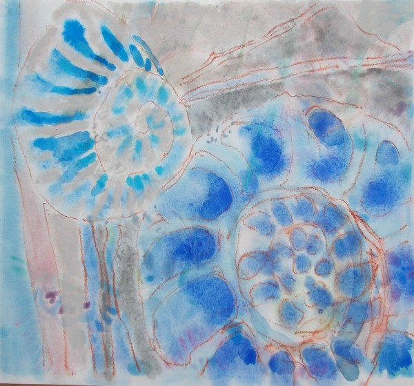 Anne Marlow, Snail and Ammonite