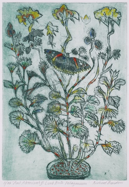 Richard Bawden Red Admiral and Lord Bute hand coloured etching Frame: 43 x 32 cm Artwork: 29 x 20 cm